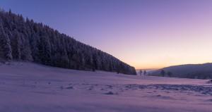 заснеженная-равнина-рядом-с-лесом-зимой-на-закате